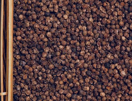 Le poivre noir